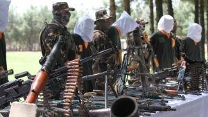Dessa talibaner greps den här veckan i Herat i västra Afghanistan, misstänkta för terrorattacker och andra brott.