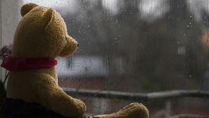 En teddybjörn tittar ut genom fönstret.