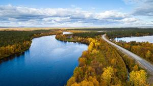 höstlandskapsvy ovanifrån med träd, landskapsväg och sjö