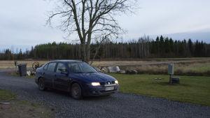 Blå personbil kör in på gårdsplan. I bakgrunden landsbygd med åkrar och skog.
