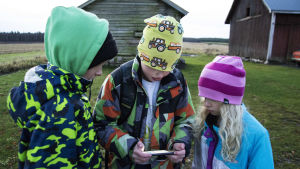 Tre barn står utomhus tätt tillsammans och tittar på en mobilskärm.