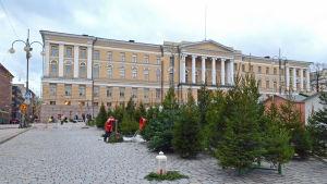 Julgransförsäljning utanför Helsingfors universitet.