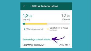 Kuvakaappaus WhatsAppista: Oman tallennustilan hallinta asetuksista.