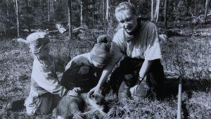 Mustavalkoinen kuva, jossa Iida Melamies on isoveljensä ja isosiskonsa kanssa pienen poronvasan ympärillä.