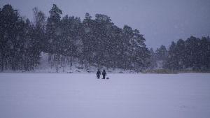 Två män långt borta går på isen och det snöar