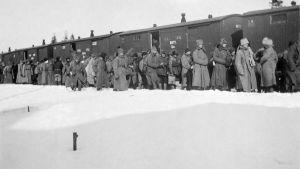 Svartvit bild från 1921. Människor i vinterkläder står i snön intill ett tåg. Flyktingar lastas på tåg i Terijoki.