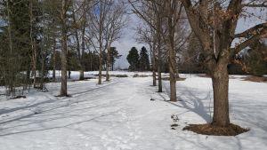 Väg i snöigt landskap som leder upp mot en kulle.