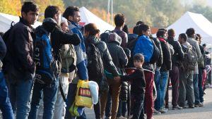 Flyktingar vid den tysk-österrikiska gränsen nära staden Passau den 30 oktober 2015.