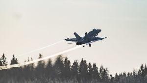 Hornet-plan som lyfter, fotograferat snett bakifrån.