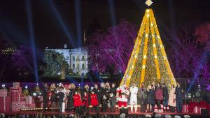 Julsånger sjungs vid nationens julgran nära Vita huset i Washington, USA.