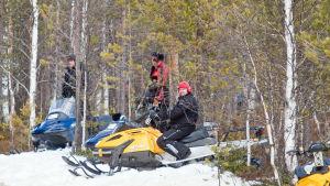 Tre renskötare sitter på varsin snöskoter i skogsbrynet.