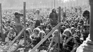 Ruisrock-festivaalin yleisöä vuonna 1971. Kuva Ruisrock-dokumenttielokuvasta.