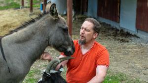 En medelålders man i orange skjorta och skägg som klappar en åsna och en get.