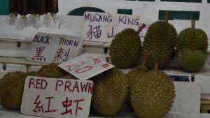 Olika sorter av durian är till salu på marknaderna i Malaysia. Den dyraste sorten, Musang King, har blivit en storsäljare i Kina.