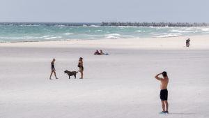 Folk på stranden på Miami Beach den 8 september 2017.