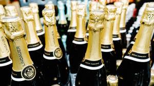 Flaskor med mousserande vin står på rad i en försäljningshylla i Alko.