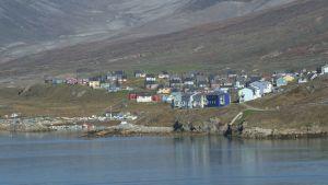 Vy över den grönländska orten Narsaq, fotograferad från Narsaq sund.