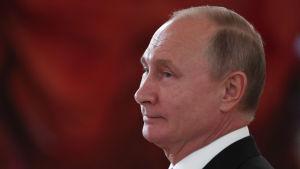 Vladimir Putin i profil mot ett rött draperi i bakgrunden.