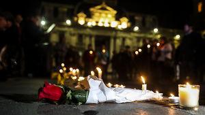 En ros ligger på marken bland ljus som ett minne för de som blivit utsatta för sexuella övergrepp inom Romersk-katolska kyrkan.