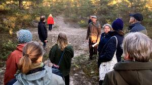 En grupp människor i en gles tallskog. De tittar omkring sig på träden, främst tallar. Det är vår,  ingen snö på marken, skymning.