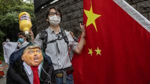 Pekingtrogen demonstrant i Hongkong kritiserar USA:s inblandning och det amerikanska stödet till demokratiaktivisterna.