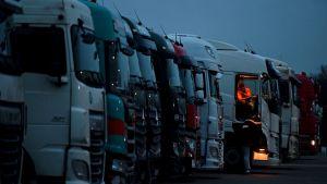 Långtradare står parkerade i Kent i väntan på att få ta sig över till Frankrike