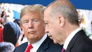Donald Trump och Erdogan