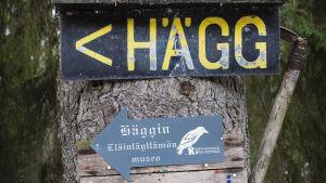 Skyltar med texterna HÄGG och Häggin eläintäyttämön museo.