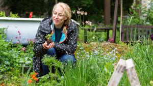 Harriet Abrahamsson på sin odlingslott i Toimela odlingsträdgård.