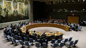 Alla övriga 14 länder i FN:s säkerhetsråd röstade för resolutionen om Jerusalem som stoppades av USA:s veto