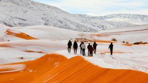 Människor vandrar på snötäckta sanddyner.