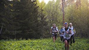 Fem terränglöpare springer över en blommande äng.