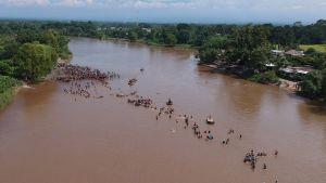 Migranter vadar över gränsfloden Suchiate mellan Guatemala och Mexiko på måndagen 29.10.