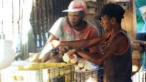 Kaksi miestä tekee leipää