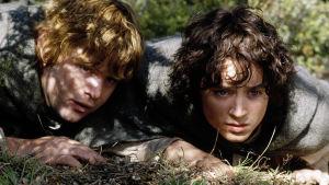 Taru sormusten herrasta: Kaksi tornia (12)  Kuvassa Sam (Sean Astin) ja Frodo (Elijah Wood).