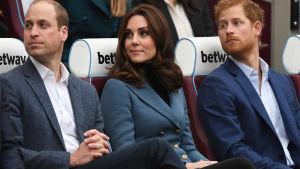 Storbritanniens prinsar William, Harry och Catherine, hertiginna av Cambridge.