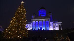 Helsingfors domkyrka lyser blått.