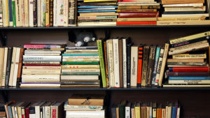 Välfylld bokhylla.