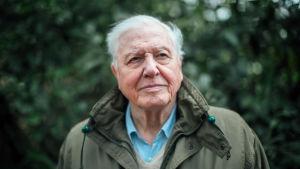 Sir David Attenborough selvittää, miten ilmastonmuutos vaikuttaa ja mitä sitä pitää torjua.
