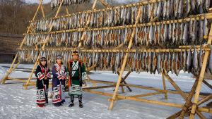 Medlemmar av Ainufolket står i traditionella kläder och torkar fisk.