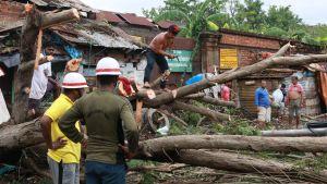 Röjning efter stormen Amphang.