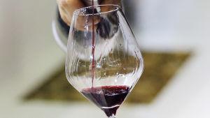 Rödvin hälls i glas på en vinmässa  i Montpellier i Frankrike.