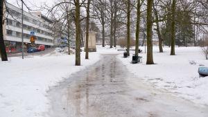 En isig parkväg.