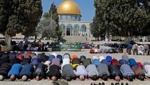 Muslimer som ber utanför Klippdomen vid Al-Aqsa i Jerusalem 22.3.2019