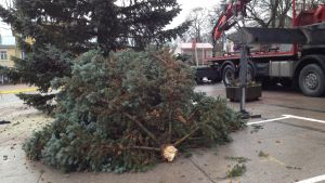 En brusten julgran på Rådhustorget i Ekenäs