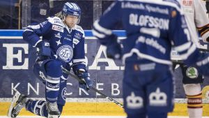 Joe Piskula spelade i fjol i Leksands IF.