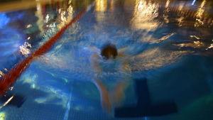 Simmare i en simbassäng.