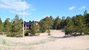 En bild på ett lägerområde. På bilden syns ett rött hus omgivet av tallar.