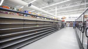 Butikshyllor gapar tomma i en butik i North Carolina inför orkanen Florences ankomst.