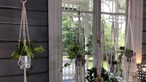 makraméamplar som hänger vid ett fönster